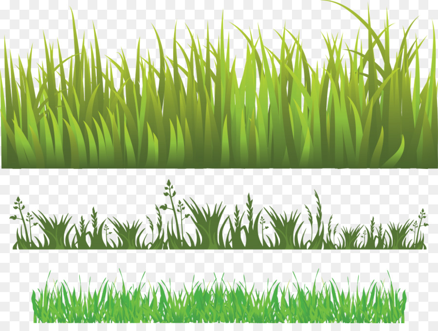 grass background subpng