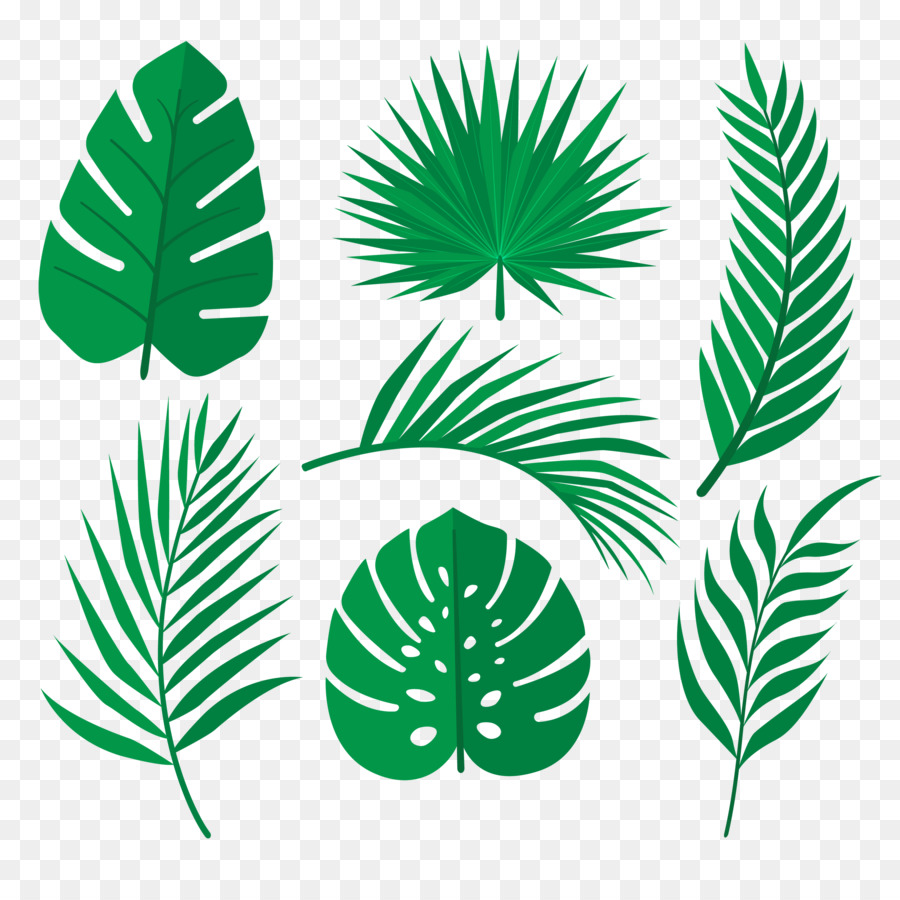 Palm Tree Leaf Large collections of hd transparent tropical leaves png images for free download. palm tree leaf